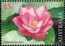 An Australian stamp with the picture of a lotus flower, which signifies spiritual awakening.