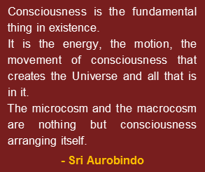 """Consciousness is the fundamental thing in existence. It is the energy, the motion the movement of consciousness that creates the Universe and all that is in it. The microcosm and the macrocosm are nothing but consciousness arranging itself."" - A quote by Sri Aurobindo."