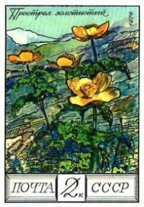 Flower postage stamps - A Russian stamp depicting yellow pasque flowers.