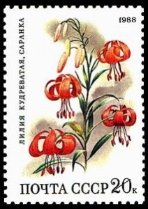 Flower postage stamps - A Russian stamp depicting pretty red flowers.