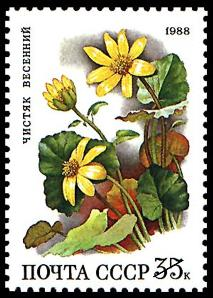 Flower Postage Stamps - A Russian stamp depicting yellow flowers.
