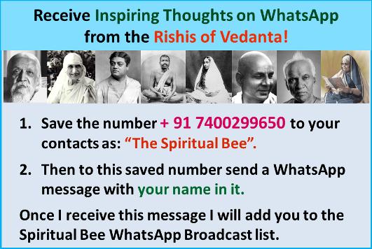 spiritual-bee-whatsapp-broadcast-small