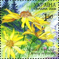 Flower Stamps - A Ukraine stamp showing the Montana Arnica flower.